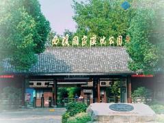 杭州西溪湿地周家村景区